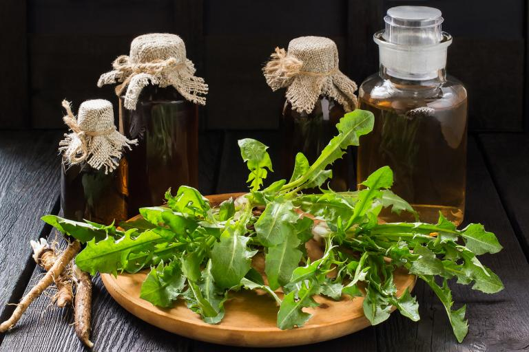 Dandelion leaves and roots with bottles of digestive bitters in the background.